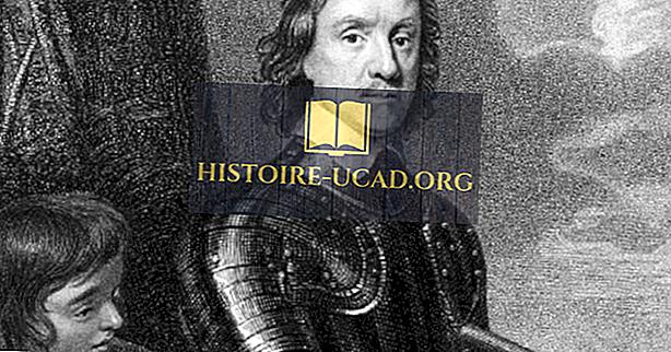 Oliver Cromwell - Weltmarktführer in der Geschichte