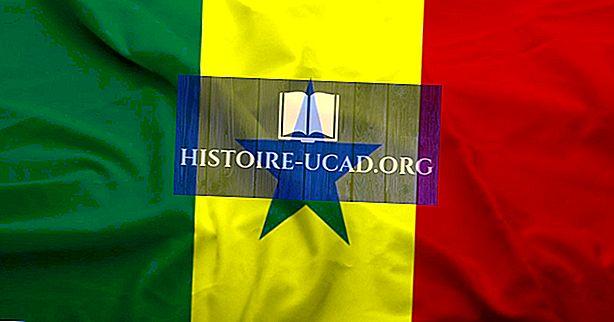 Mis keeli Senegalis räägitakse?