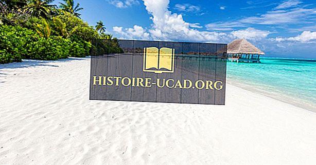 Bahasa apa yang digunakan di Maladewa?