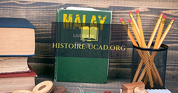 말레이시아에서 어떤 언어가 사용됩니까?