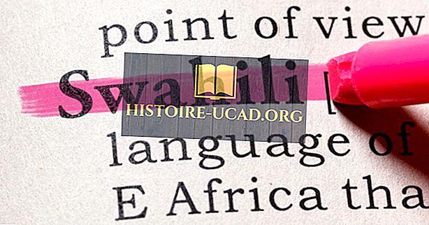 Welche Sprachen werden in Kenia gesprochen?