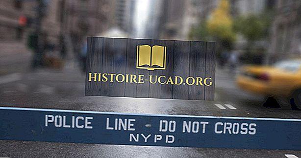 Miért volt ilyen sok bűncselekmény New Yorkban az 1970-es években?