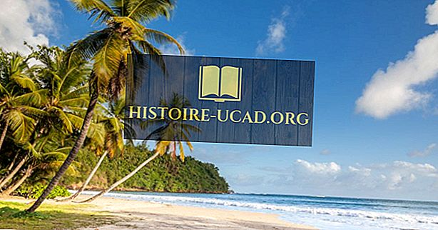 Milyen nyelveken beszélnek Grenada?