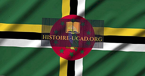 Hvilke språk snakkes i Dominica?