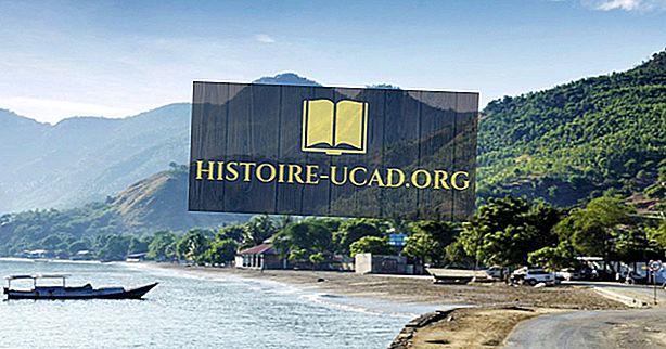 Kokiomis kalbomis kalbama Rytų Timore?
