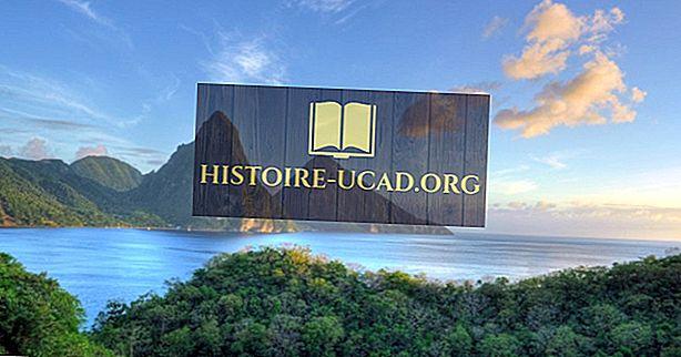 Bahasa apa yang digunakan di Saint Lucia?