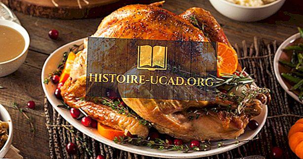 Warum essen wir die Türkei zu Thanksgiving?