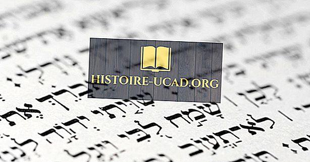 히브리어는 어떻게 발전 했습니까?