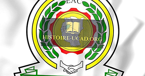 Ce este Comunitatea Est-Africană?