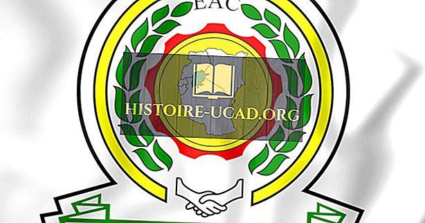 Apa itu Komunitas Afrika Timur?