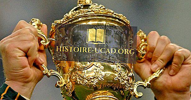 Qu'est-ce que la coupe du monde de rugby?