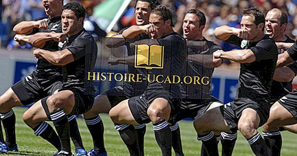 Top 8 des équipes de rugby