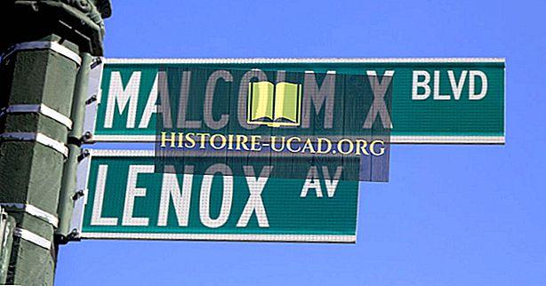Malcolm X - 미국 역사에서 중요한 인물