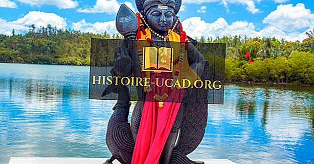 Kas yra vienintelė Afrikos šalis, kur induizmas yra dominuojanti religija?