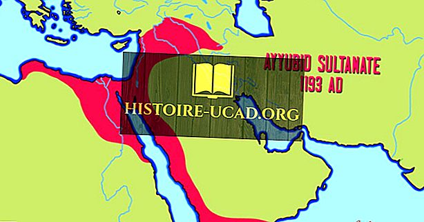 Principais impérios muçulmanos durante a Idade Média
