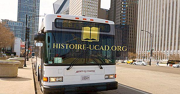Top 10 kõige aktiivsemat avalikku bussiteenust Ameerika Ühendriikides