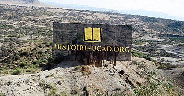 Olduvai Gorge - Situs Arkeologi Tanzania