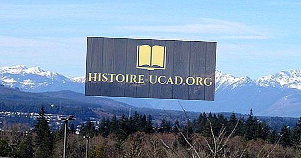 Olympic Mountains, Washington State, Verenigde Staten