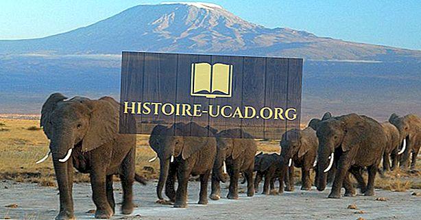 UNESCO-ve svjetske baštine u Tanzaniji