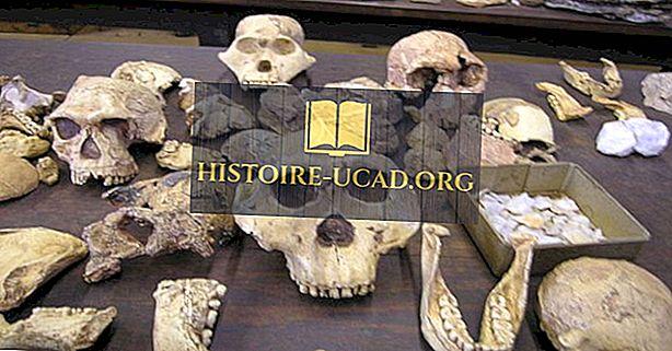 Di sản thế giới của UNESCO ở Nam Phi