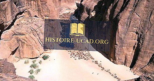 Масив и скално изкуство Енеди, Чад