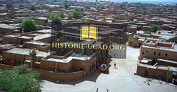 مواقع التراث العالمي لليونسكو في النيجر