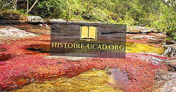 Река Кано-Кристалес, Колумбия - уникальные места по всему миру