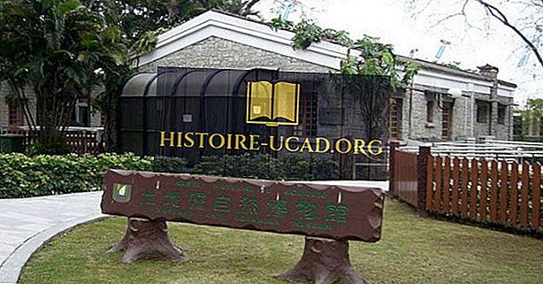 Visiter les meilleurs musées de Macao