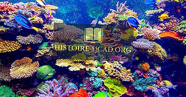 Nejstarší akvárium ve Spojených státech
