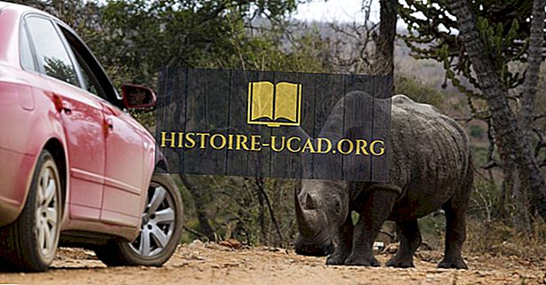 Kruger nasjonalpark, Sør-Afrika - Unike steder rundt om i verden