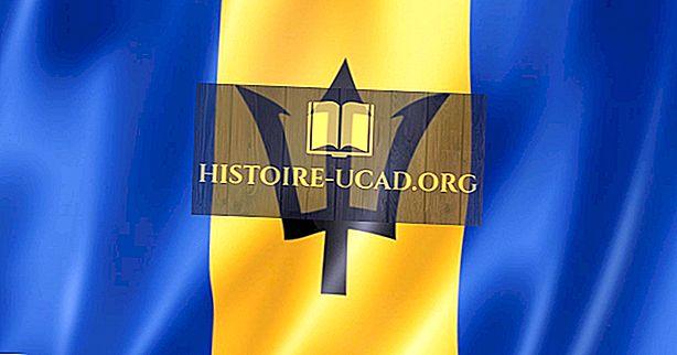 Fakta Menarik Tentang Barbados