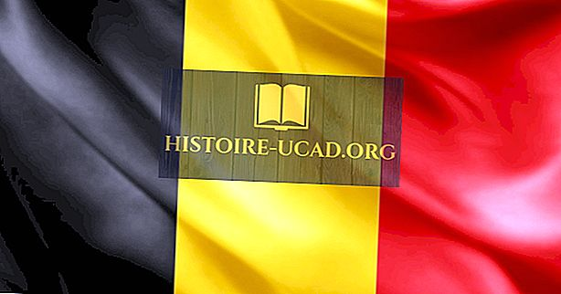 Забавне чињенице о Белгији