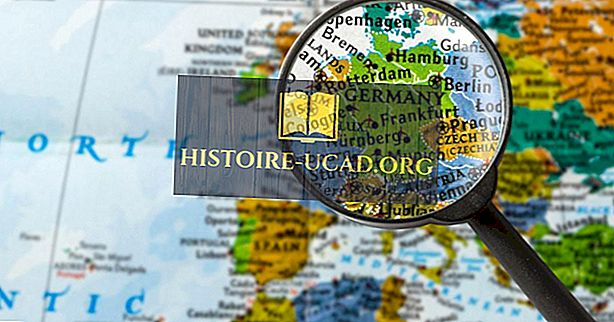Millised riigid piirid Saksamaa?
