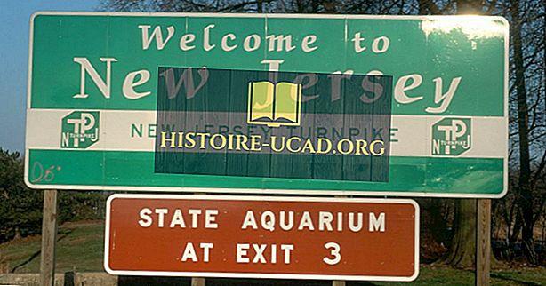 New Jersey đã lấy tên từ đâu?