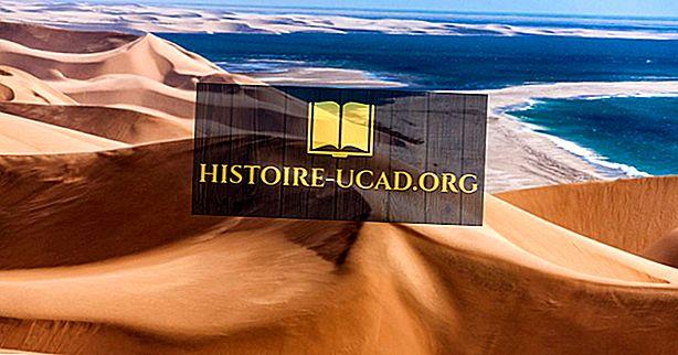 Quels sont les quatre types de déserts?