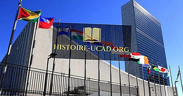 ¿Dónde está ubicada la sede de las Naciones Unidas?