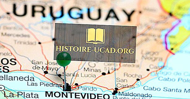 Hvilke land grenser Uruguay?