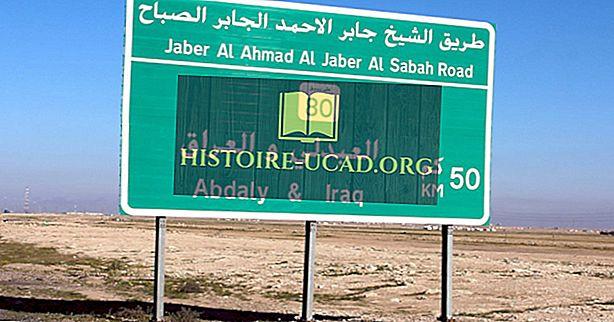 Welche Länder grenzen an den Irak?