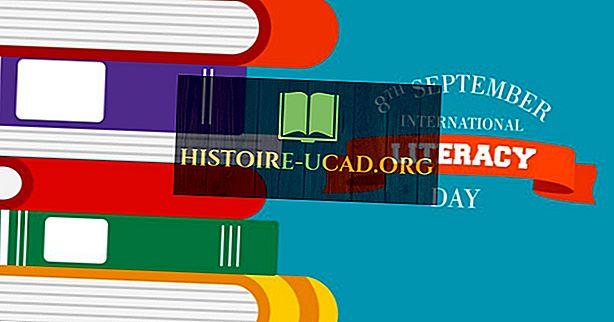 Ce și când este Ziua Internațională de Alfabetizare?