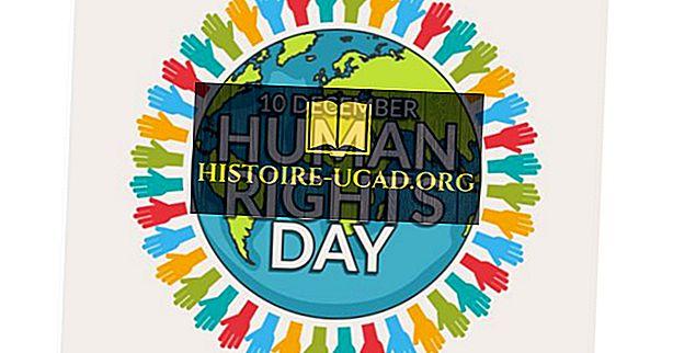 ماذا ومتى يوم حقوق الإنسان؟