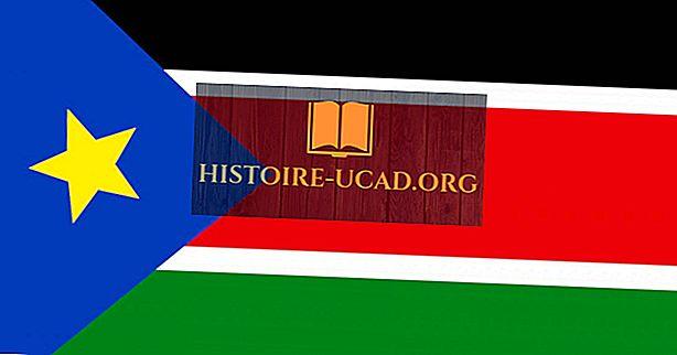 Apa Arti Warna Dan Simbol Bendera Sudan Selatan?
