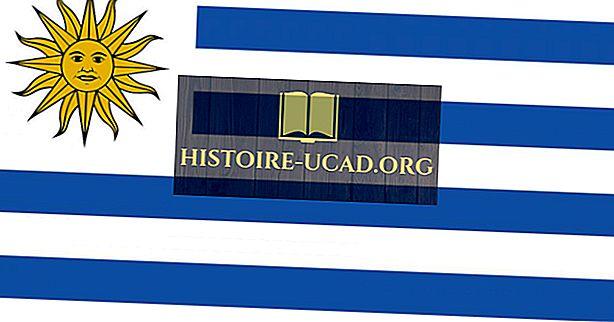 Ką reiškia Urugvajaus vėliavos spalvos ir simboliai?