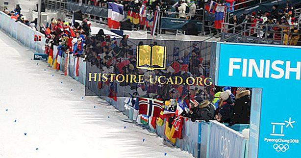 ما هي اللغات الرسمية للأولمبياد؟