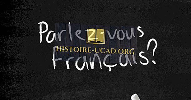 Francúzsky hovoriace krajiny v Afrike