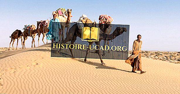 Kde je Velká indická poušť?