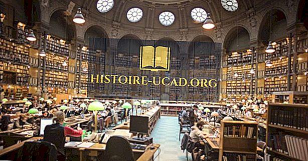 Największe biblioteki w Europie