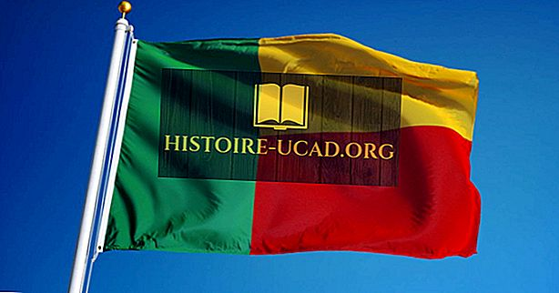 Što znače boje i simboli zastave Benina?