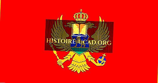 Kaj pomenijo barve in simboli zastave Črne gore?