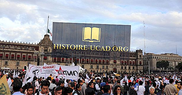 Kas buvo Meksikos purvinas karas?