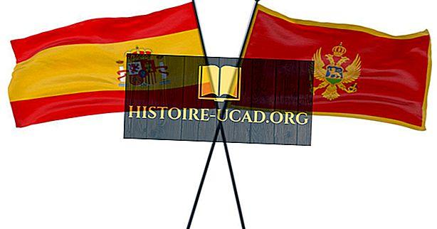 Държавни знамена с лъвове върху тях